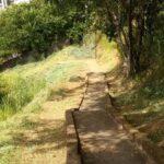 Reclamação de moradores da Cohab Nova sobre mato alto no escadão é atendida